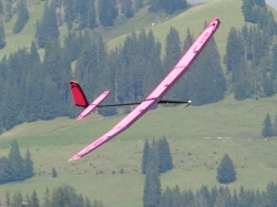 M24 V380 Elektro Super-PNP Pink F5J-Thermiksegler