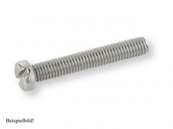 Zyl-Schr mit Schlitz M2x30 Stahl verzinkt
